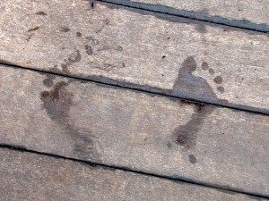 "People Tracing: photo called ""Fading Footsteps"", wet footstep marks fading as they dry on wooden decking."